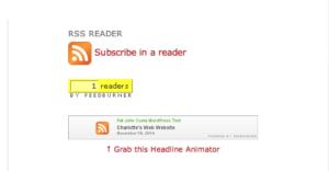 FeedBurner Site Display