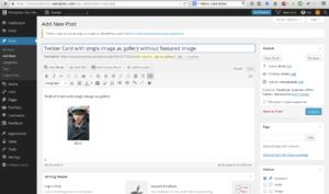 Single Image as Gallery in WordPress